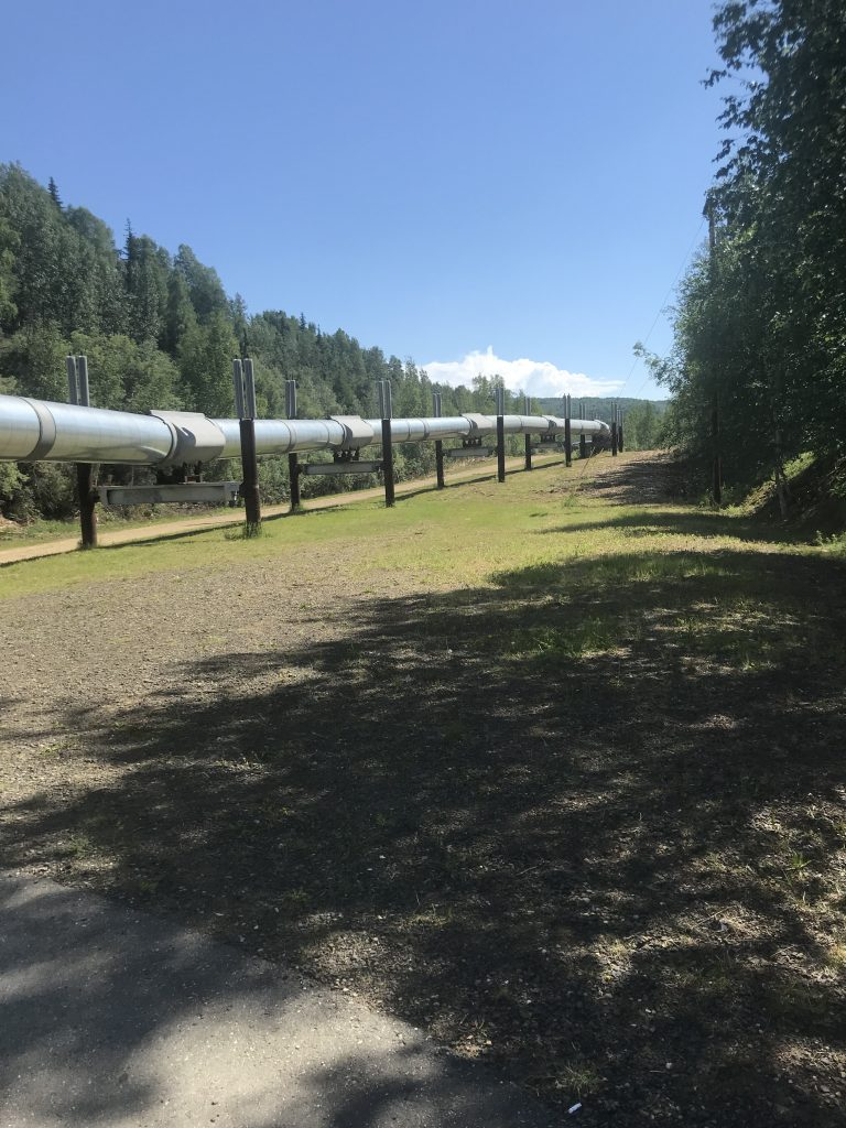 You can view the Alaska Pipeline just north of Fairbanks, Alaska.